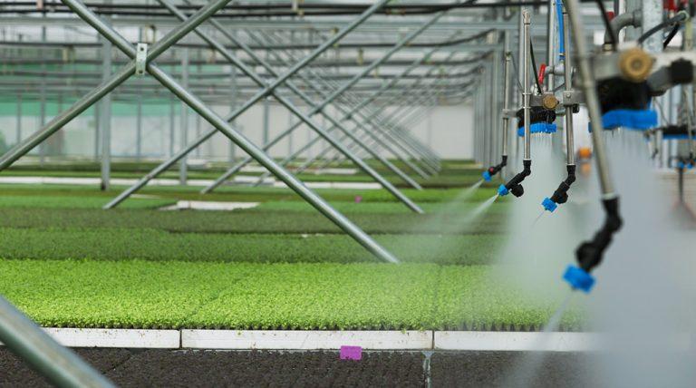 Lần đầu tiên du lịch nông nghiệp công nghệ cao VinEco xuất hiện trong khu nghỉ dưỡng 5 sao